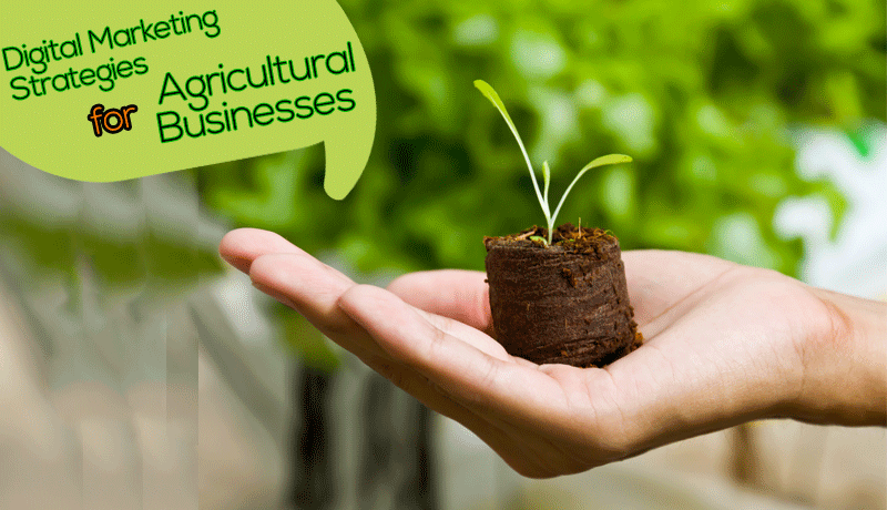 Digital Markting Strategies for Agricultural Business in Nigeria